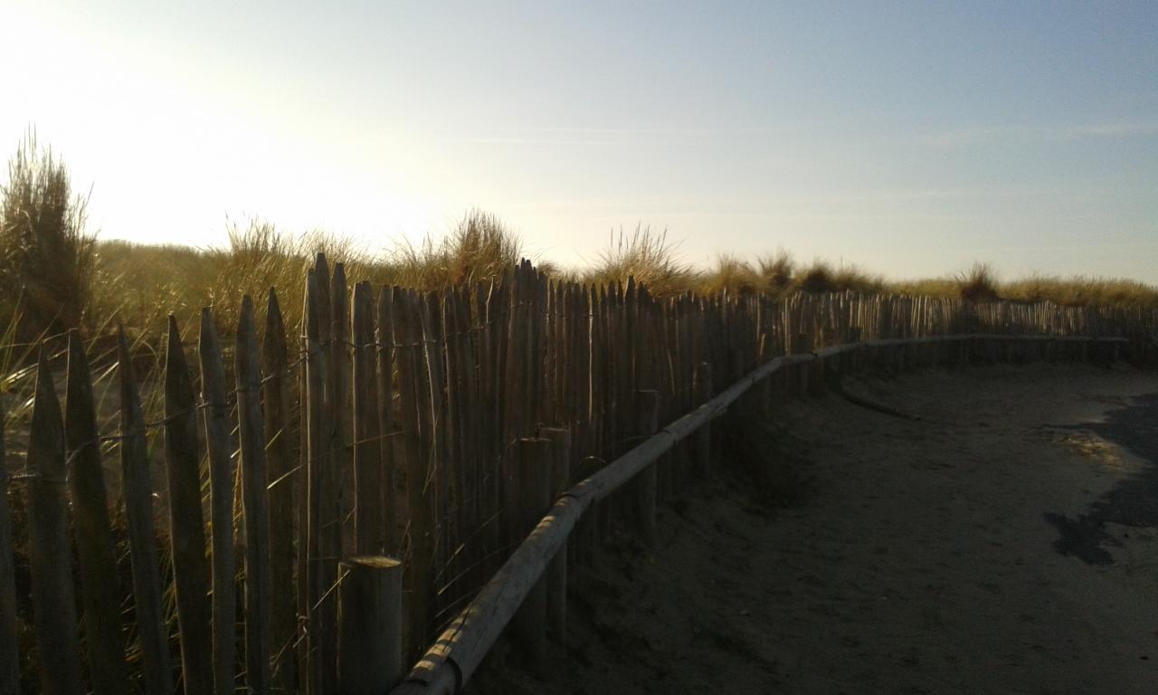 Dune et gourbet 1